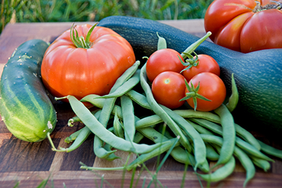 How Much Money Can You Save By Planting a Garden Our 2012 Results